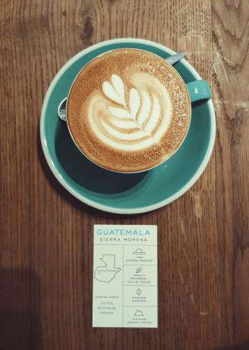 bocca coffee green cup amsterdam