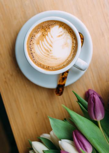 toki coffee and tulips