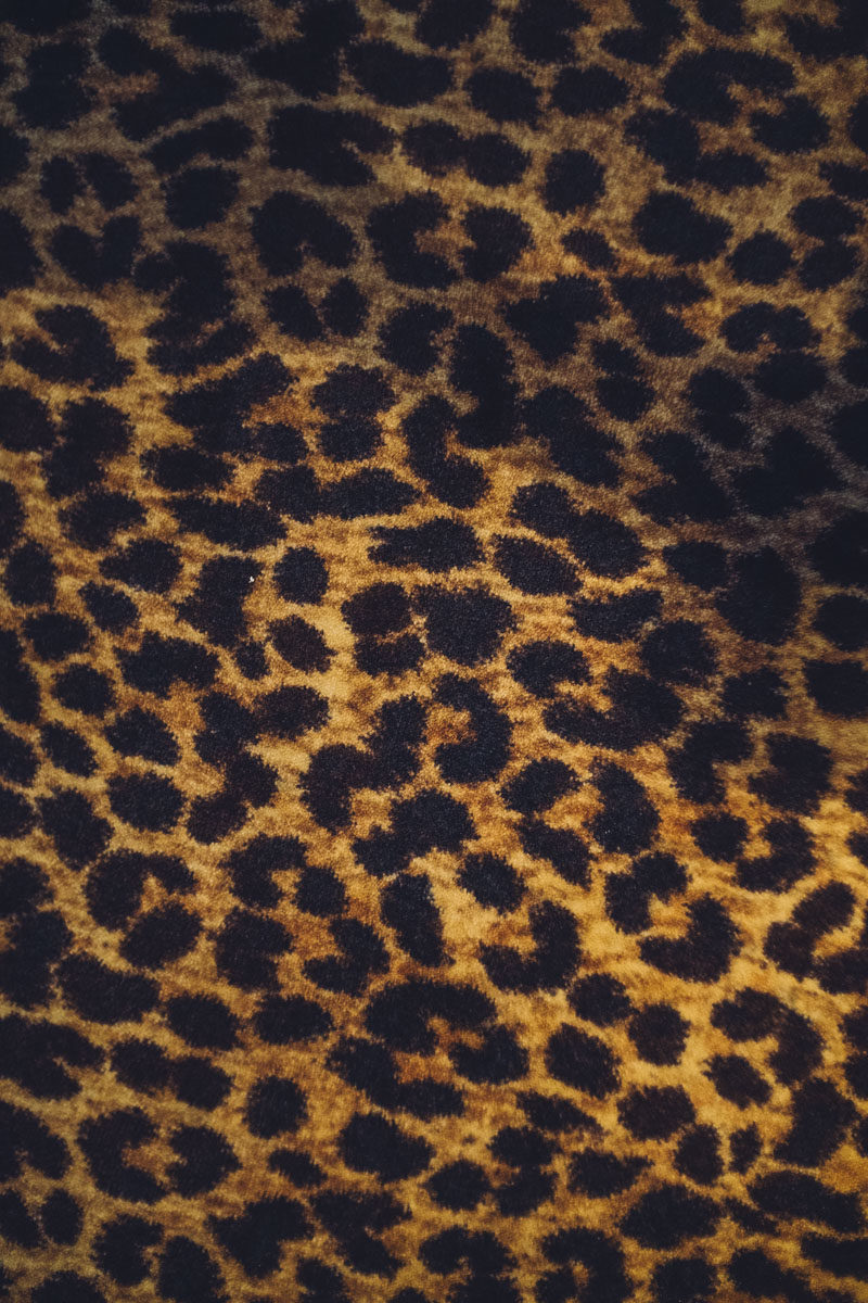 leopard print the closet