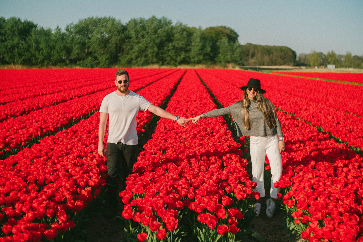 surprise proposal photography flower field