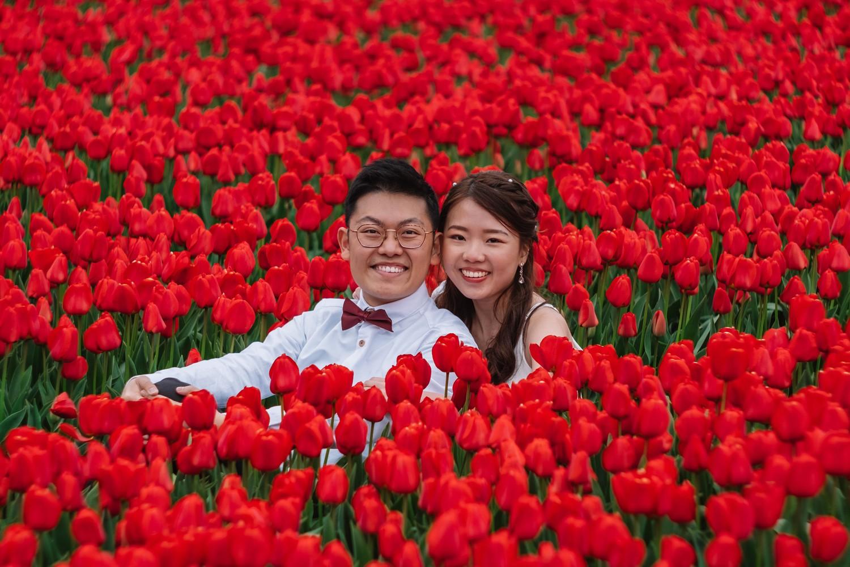 loveshoot tulip field