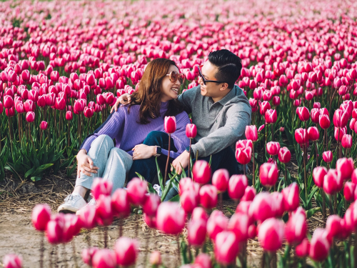 couple tulip field photography
