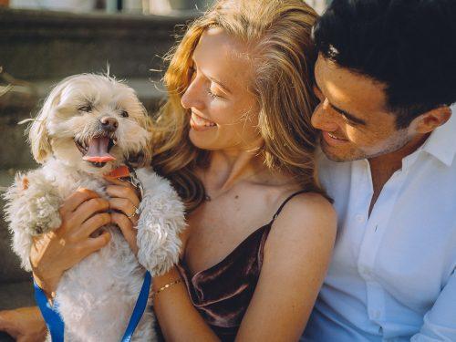loveshoot with dog amsterdam