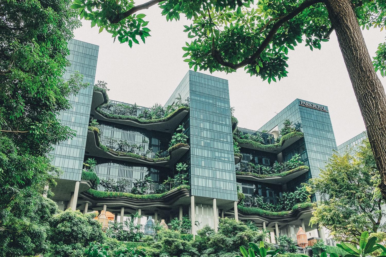 дневник путешествия Сингапур