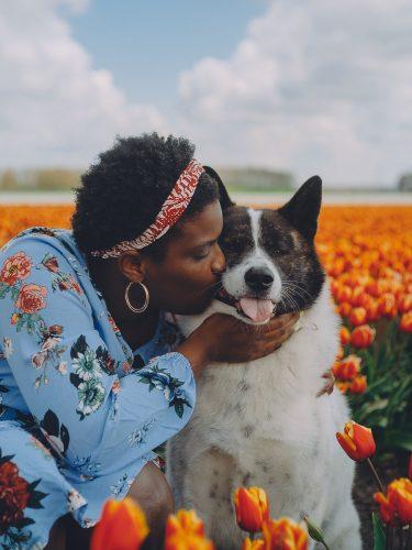 female with dog portrait tulip field