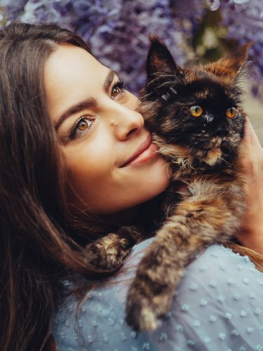 Pet photography in Amsterdam